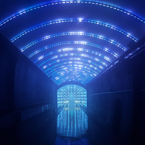 South Korea Lights the Way Through Suyanggae Light Tunnel with Martin By HARMAN