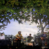 Wilco3web thumb square