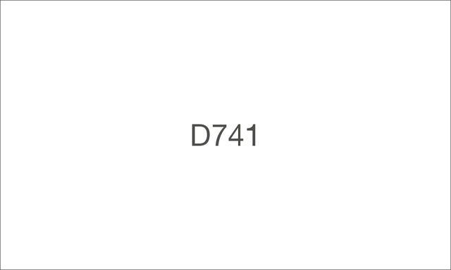 D741 1000 large