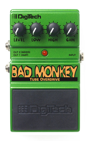 Bad monkey front large