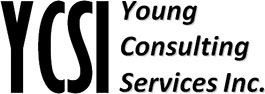 Young Consulting Services, Inc.